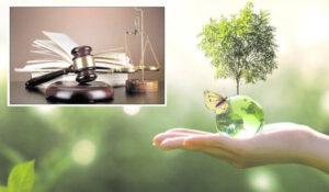 حکم زیست محیطی جالب یک قاضی در ارومیه